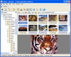 XnView free download